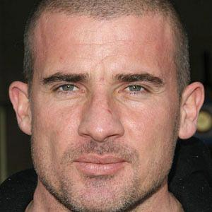 Dominic Purcell worth