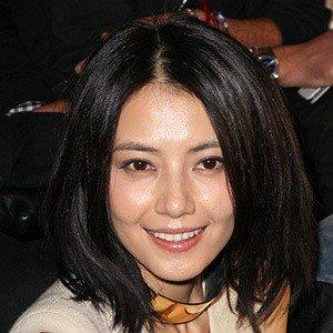 Gao Yuanyuan worth